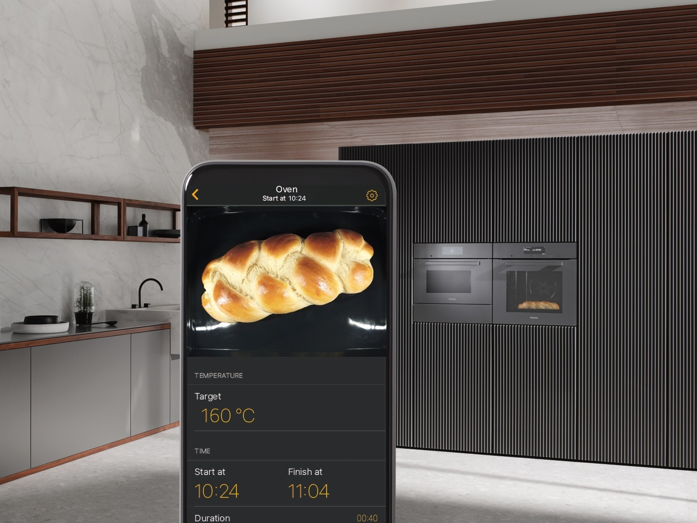 Food View Oven